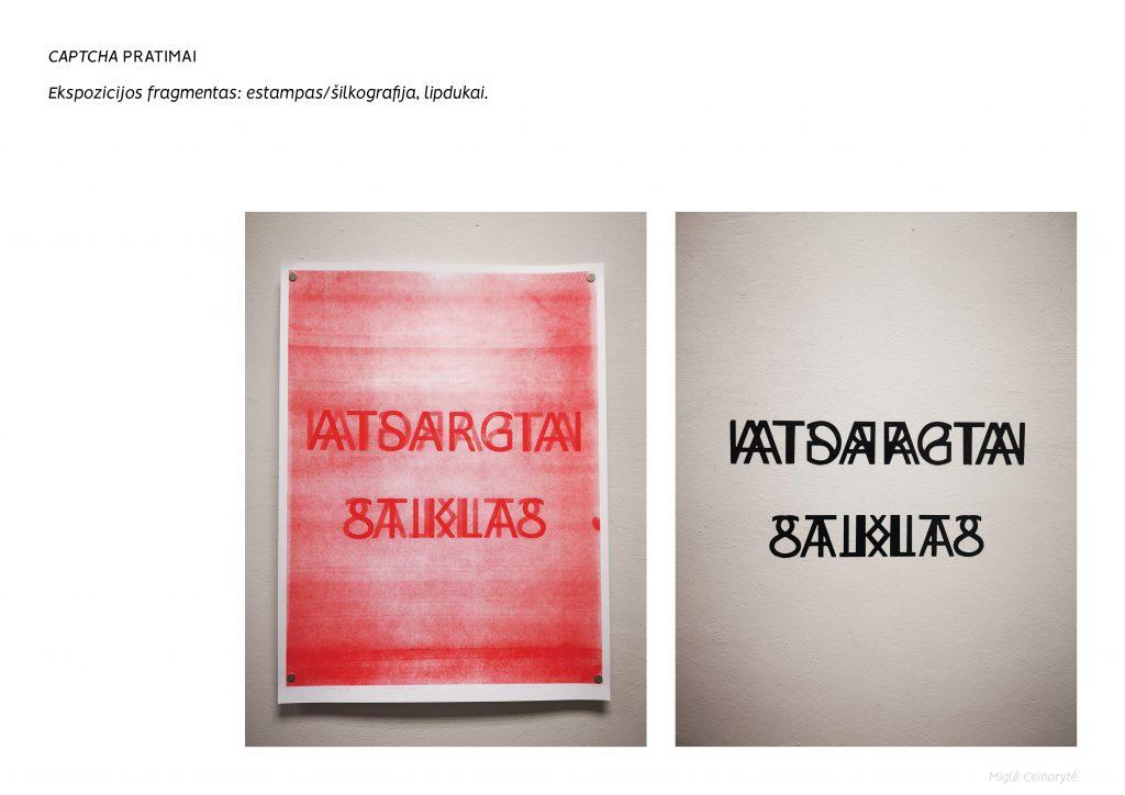 Miglė_Ceinorytė_CAPTCHA_pratimai7
