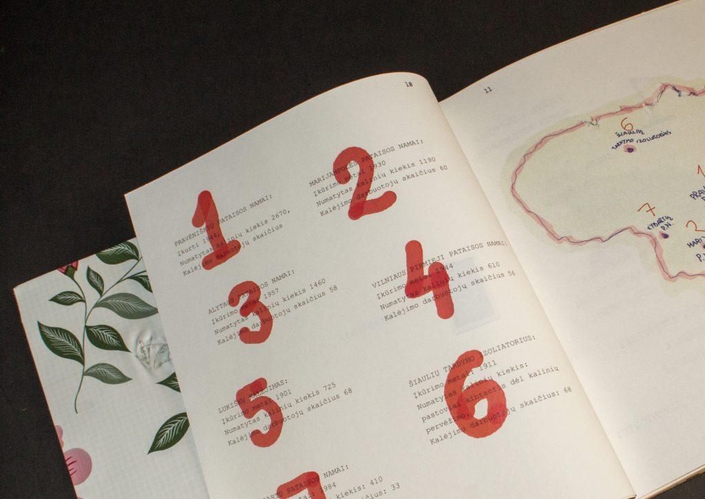 7-puslapiai