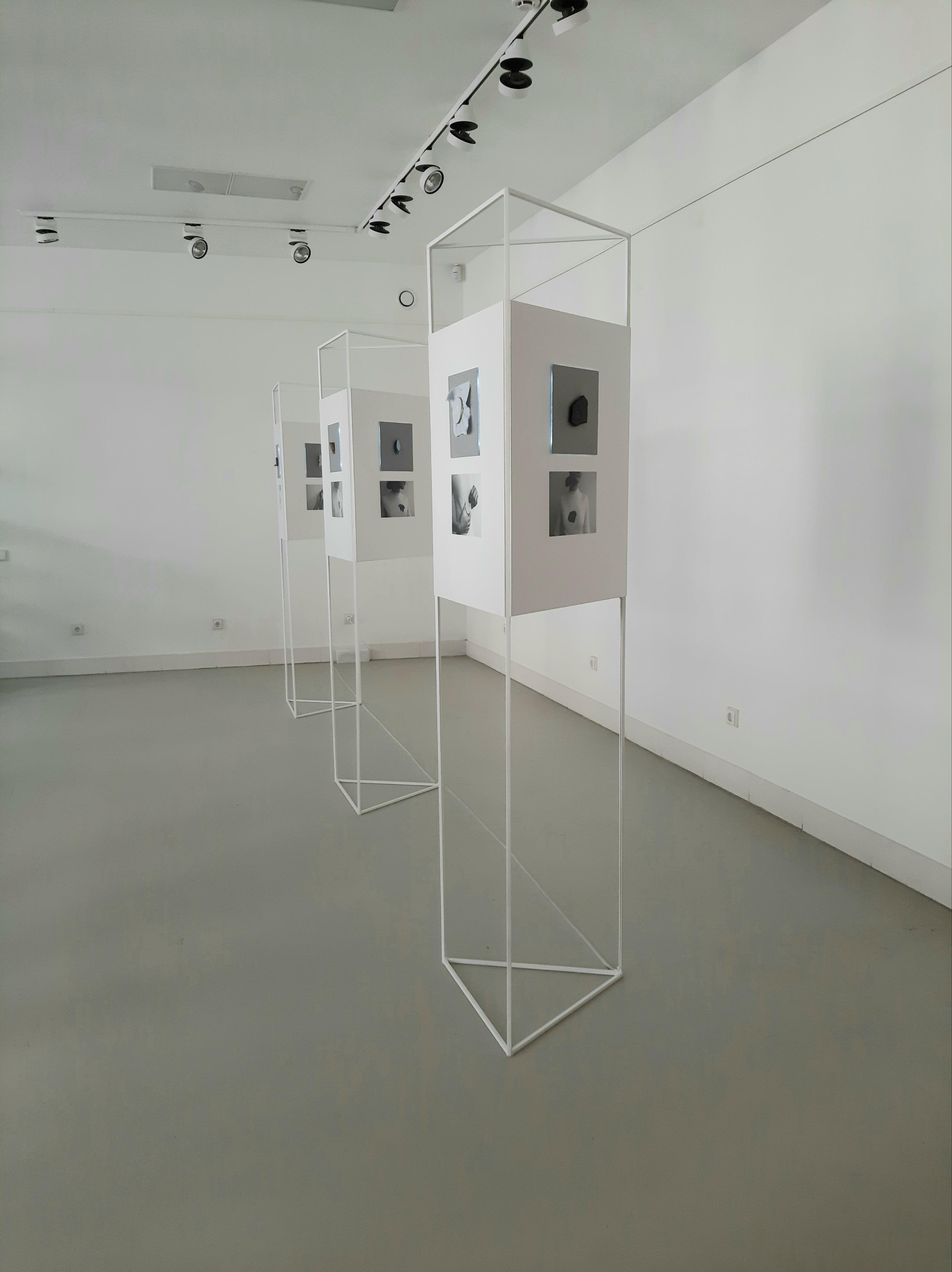 1._Gintare_Janulaityte-eksponavimas